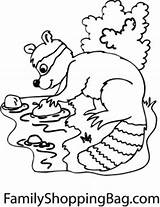 Stream Raccoon Coloring Pages sketch template