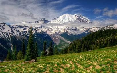 Hdr 4k Landscape Mountains Wallpapersafari Rainier Grass