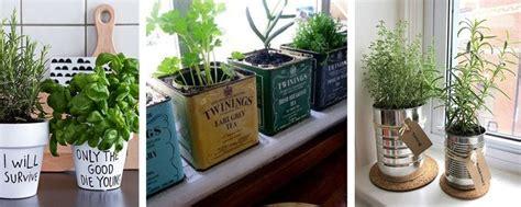 plantes aromatiques cuisine 7 best plantes suspendues images on hanging