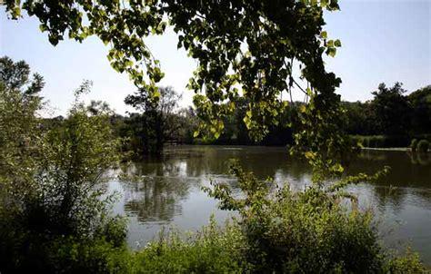 Botanischer Garten Basel Parken by Botanischergarten54 Html