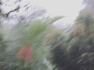 U0026 39 Golf Monsoon System  Haikus For Kids About Summertime Monsoons  2001 Sunfire Monsoon Radio U0026 39