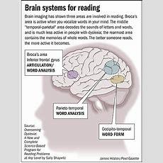 Ceria Membaca & Fun Reading