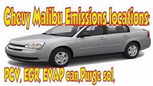 Chevy Malibu Emissions    Smog Locations  Pcv  Egr  Evap