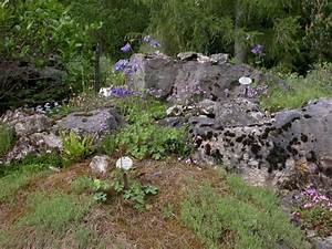 Asseln Im Garten : steingarten ~ Lizthompson.info Haus und Dekorationen