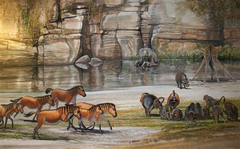 horse giraffe elephant warthog megafauna schouten gelada prehistoric animals peter end age extinct stone pleistocene creatures theropithecus species dinosaur facts