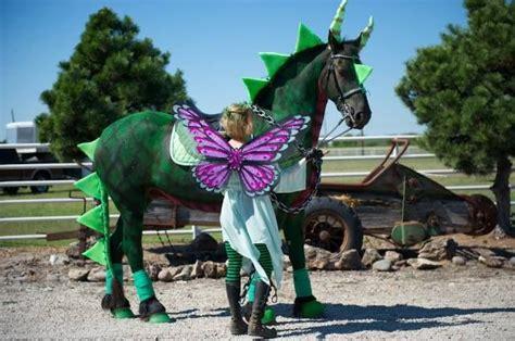 horse  rider halloween costume ideas horse decor