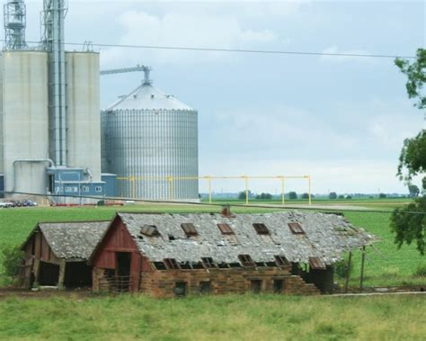 In Bloomington Il Near State Farm by These 11 Farms In Illinois Will Bring Out The Country In You