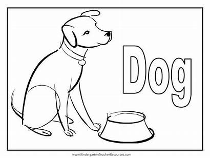 Coloring Dog Pages Cat Animal Word Drawing