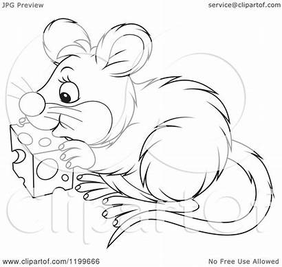 Cheese Mouse Eating Clipart Cartoon Royalty Vector