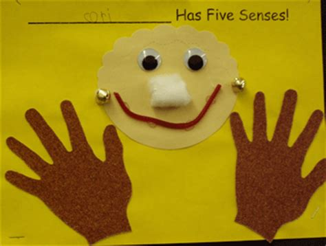 five senses teaching theme activities amp lesson plan ideas 621 | fivesensespic