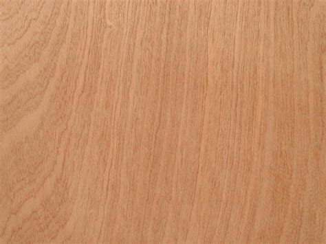 Sustainability and Plywood Woodguideorg