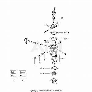 Poulan Te450 Gas Trimmer Parts Diagram For Carburetor Assembly P  N 530069754