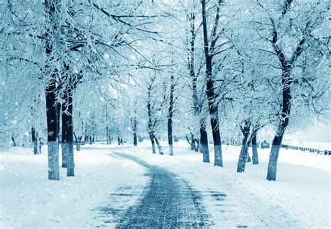 l for winter depression 5 tips to help ward off the winter blues health today
