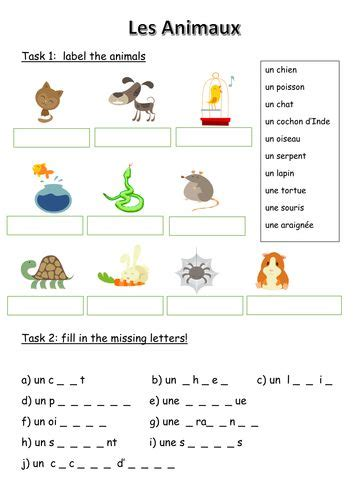 les animaux french animals worksheet learn french
