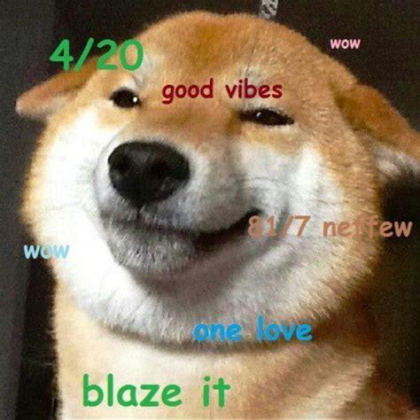 Shiba Memes - the best of the hilarious shibe meme