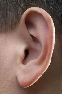 What Does It Mean When The Inside Of My Ear Is Always Itchy