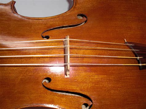 File:Cello strung gut.JPG - Wikimedia Commons