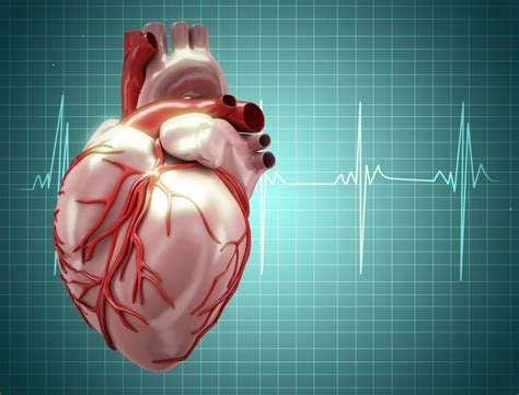 vitamin weight gain non o blood groups associated with higher coronary