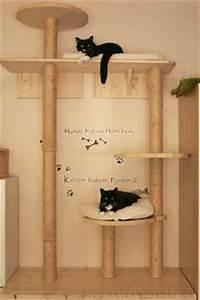 Kratzbaum Selber Bauen Zubehör : 7 besten katzennetz zum aufschieben bilder auf pinterest balkon adressen und hunde ~ Frokenaadalensverden.com Haus und Dekorationen