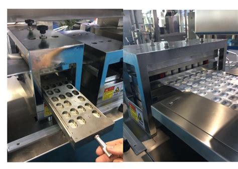 developed fully automatic pharmaceutical blister packaging machine