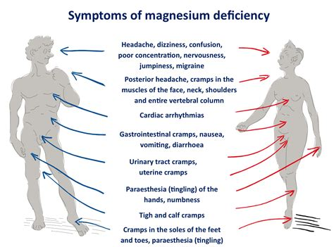 South Africans Are Magnesium Deficient Fuelling Disease