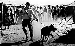 Remembering South African Apartheid | Multimedia | teleSUR ...