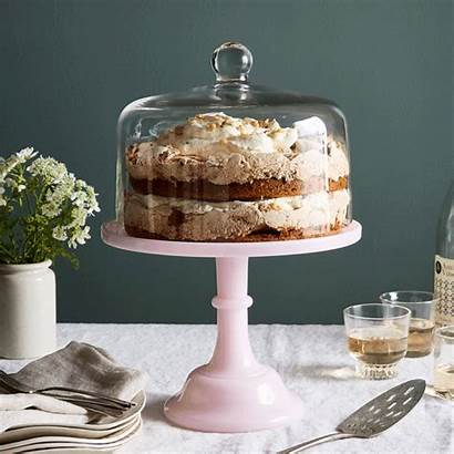 Glass Cake Stand Dome Food52 Mosser Inch