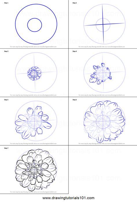 draw dahlia flower printable step  step drawing