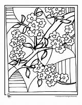 Blossom Cherry Coloring Pages Tree Chinese Blossoms Colouring Sheets Drawing Fantasy sketch template