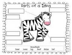zoo images zoo activities dear zoo zoo preschool