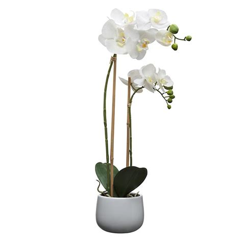 ideas  artificial orchids  pinterest