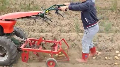 vađenje krompira motokultivator labin youtube