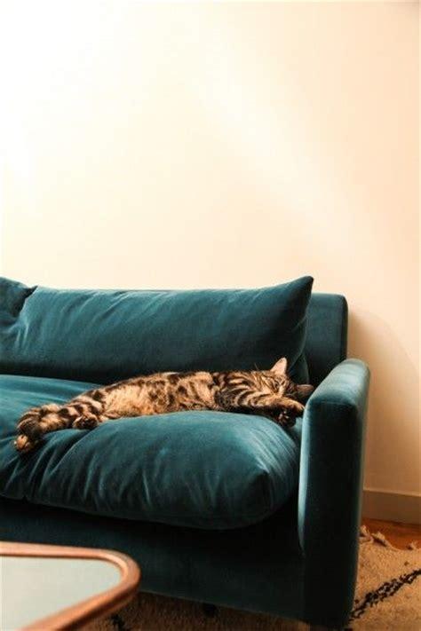 1000 ideas about velour sofa on velvet