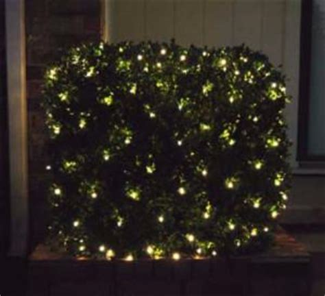 how to attach net lights to hedges led net lights net lighting for bushes holidaylights