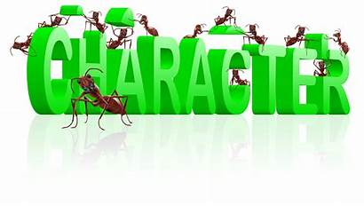 Character Building Excellent Positive Word Tozier Developing