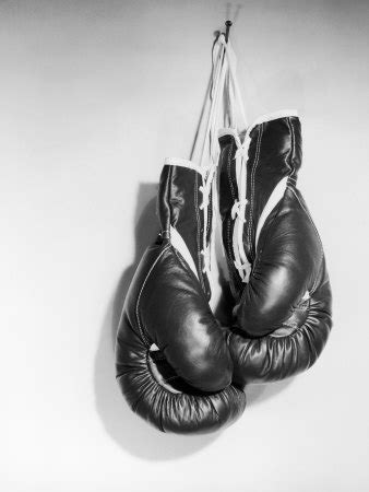 What would a boxers union look like?