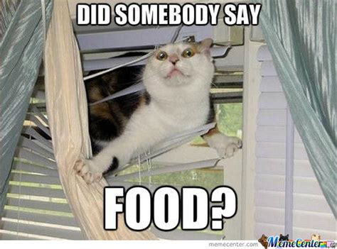 Food St Memes - 47 most funny food memes images gifs pictures photos picsmine