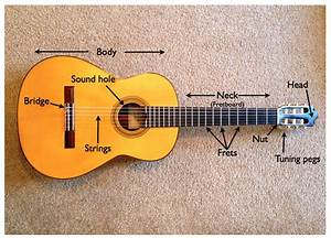 Acoustic Guitar All Parts Name