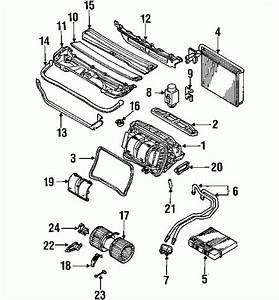 2003 Bmw 325i Engine Diagram