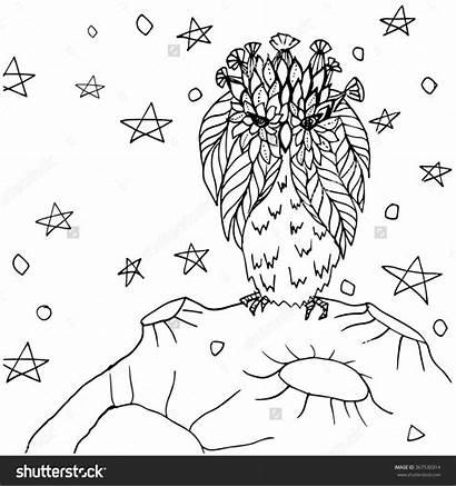 Coloring Sky Starry Night Drawing Moon Bird