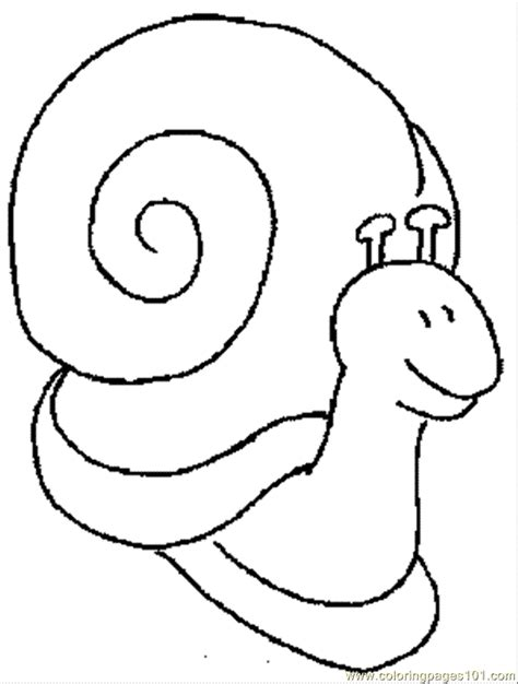coloring pages insects coloring home