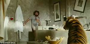 The hangover series epic moments for The hangover tiger in the bathroom