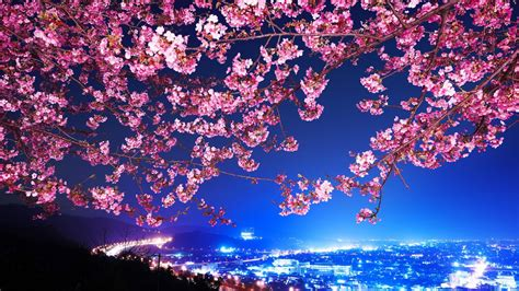 japan hd wallpapers pixelstalknet
