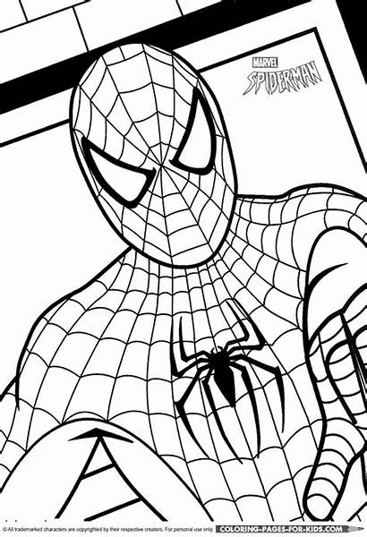 Coloring Cartoon Spiderman Pages Character Spider Printable