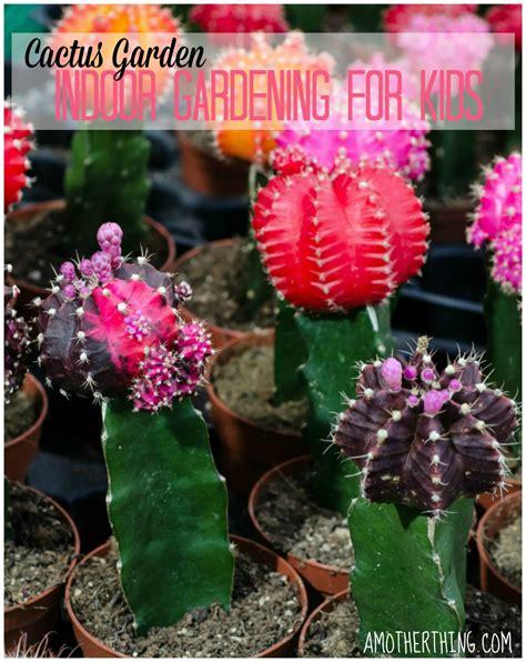 indoor gardening ideas for children photograph indoor gard