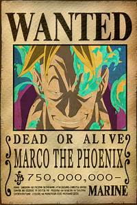 Marco the Phoenix Bounty by AnimeGalaxyHD on DeviantArt