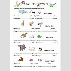 Comparison With Animal Worksheet  Free Esl Printable Worksheets Made By Teachers