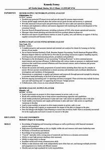 Relevant Experience Resume Samples Supply Senior Analyst Resume Samples Velvet Jobs