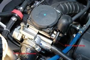 Modern Vespa   Et4 Manual  Diagram  Mechanical Question