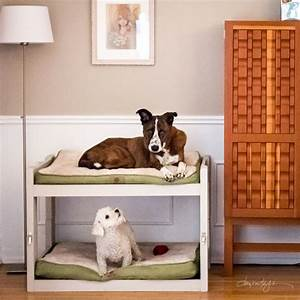 Dog Bunk Bed Plans Plans DIY Free Download roubo workbench
